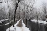 Завтра в Украине сыро и дождливо