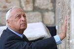Экс-премьера Израиля похоронят на ферме
