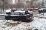 В Киеве спилили старое дерево, разбившее машину
