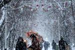 Снежный циклон похозяйничает в Украине до 23 января