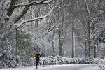 Что сегодня ждет украинцев: прогноз на 1 февраля