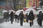 В Японии десятки человек пострадали в результате аномального снегопада