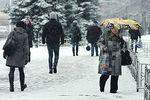 Какая погода ожидает Украину в ближайшие дни