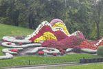 На киевских клумбах появятся экзотические цветы