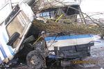 """Автобус """"Харцызск - Донецк"""" из-за собаки влетел в дерево"""