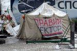 """""""Правый сектор"""" готов освободить Грушевского в течение суток"""