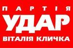 """""""УДАР"""" проголосует за назначение нового правительства Украины, но не войдет в его состав"""