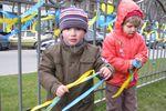 Харьковчане сделали патриотичным проспект Ленина и разукрасили деревья желто-синей побелкой
