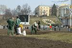 Где в Киеве высадили новые деревья