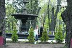 Парк в центре Киева засадили розами