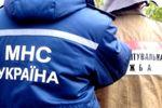 В киевском лесу нашли тайник с боеприпасами
