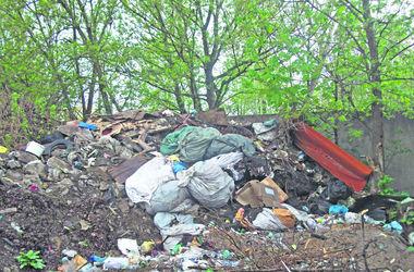 Киевские кладбища превратились в свалки