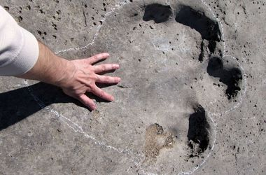 Туристы едут в Туркменистан погулять по тропам динозавров