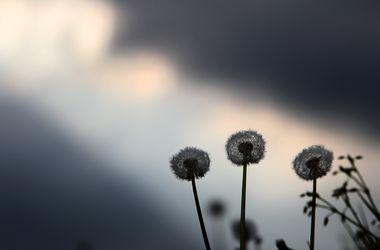 Циклон принесет в Украину дожди, грозы и заморозки