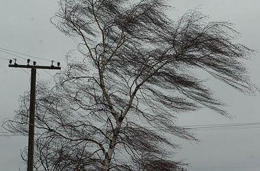 Непогода оставила людей без света в 8 областях Украины
