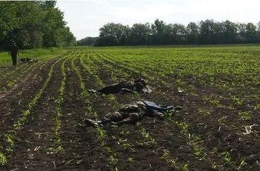 В бою под Волновахой погибли 16 человек