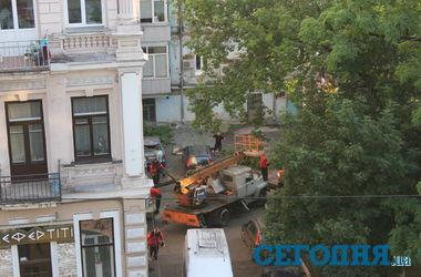 В Киеве упавшее дерево раздавило иномарки, на месте работают газовщики