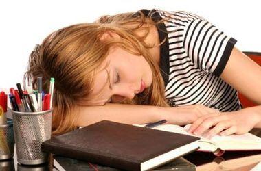 Ученые выяснили, почему сон улучшает память