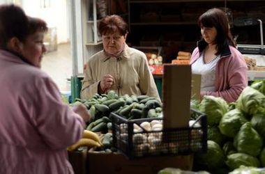 Начался сезон овощей: огурцы дешевеют, лук дорожает