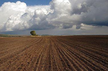 В Украине нужно упорядочить использование природных ресурсов – эксперт