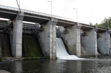 Во Львовской области из-за прорыва дамбы в реке погибла рыба - в воду попали отходы спиртзавода