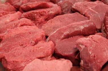В Крыму не знают, что делать с тоннами тухлого мяса