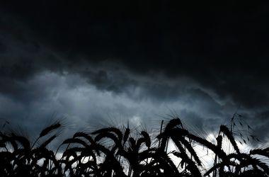Завтра не стоит ждать милостей от погоды