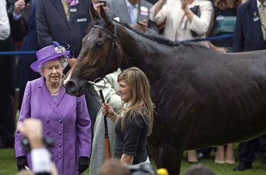 Королеве  Елизавете грозит штраф за допинг, найденный у ее скаковой лошади