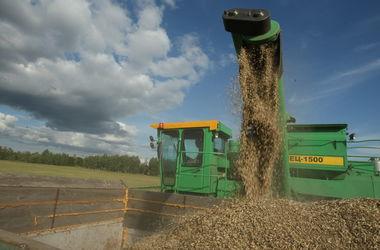 Украина вошла в тройку мировых лидеров по экспорту зерна