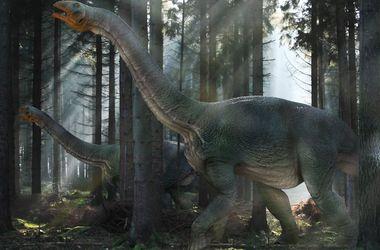 Динозавров погубило невезение