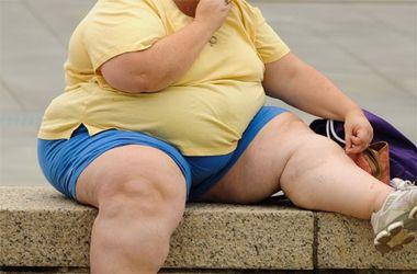 Люди с ожирением менее продуктивны - ученые