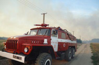 В Херсонской области горело 1 тыс. га заповедника Аскания Нова