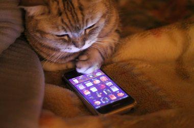 В Симферополе начались проблемы с мобильной связью