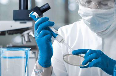 ВОЗ объявила вирус Эбола угрозой международного значения