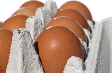 Россия оставила крымчан без яиц