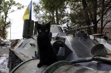В боях за Иловайск погибли 19 силовиков, 46 ранены - Геращенко