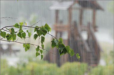 Украину накроют похолодание и дожди