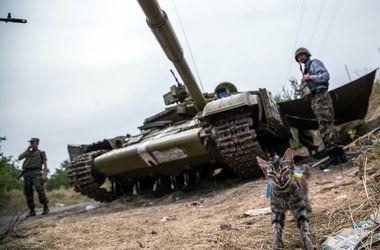 В Луганской области место боевиков заняла российская армия - СНБО