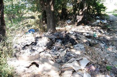 В Днепропетровской области юноша убил отца и сжег его тело