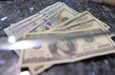 От дальнейшего падения гривну сдерживают лишь кредиты