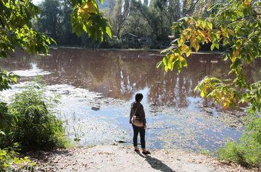 Река Коник в Голосеево приобрела бордовый цвет