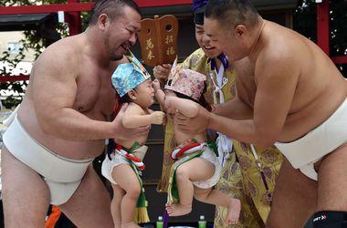 Детское сумо: нужно разрыдаться для победы