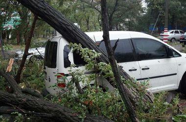 Шторм в Мариуполе: побитые авто, перекрытые дороги и обесточенные дома