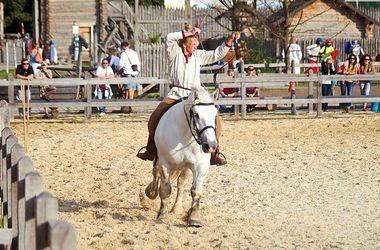 Под Киевом покажут более двадцати пород лошадей