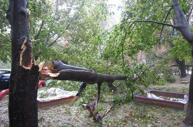 Непогода наломала дров: в Днепре и Мариуполе шторм затопил целые улицы, а над Ровно пронесся смерч