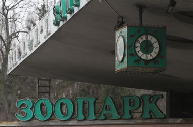 Сегодня в Киевском зоопарке будут раздавать подарки и призы