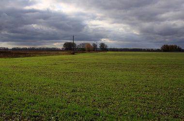 Гройсман: Земельные участки в Украине будут продаваться только через аукционы