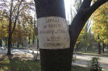 "Киевляне грозят за шум сигнализации ""штрафом"" – отправкой на фронт"