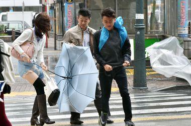 """""""Зверь"""" парализовал жизнь в Японии"""