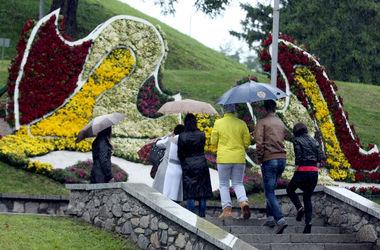 В центре Киева открылась осенняя выставка цветов